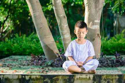 kid on white clothing , practice sitting Meditation under the big tree with peace in mind